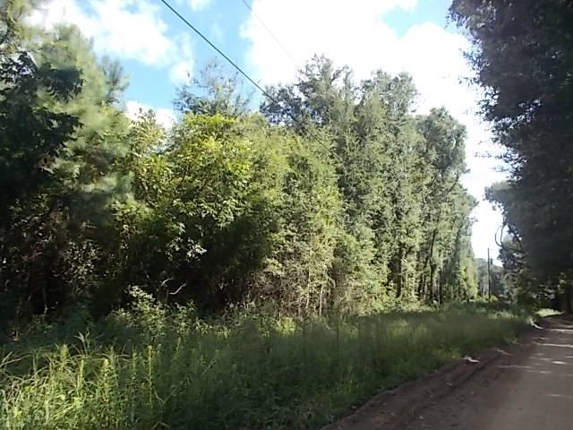 Slim Road Wadmalaw Island, SC 29487