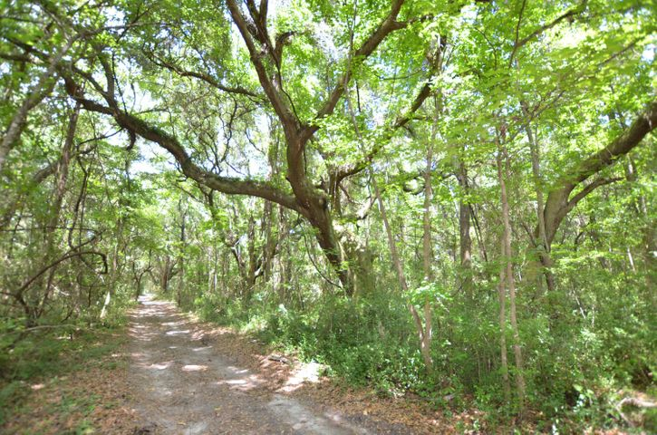 0 Old Collins Creek Road, McClellanville, SC 29458
