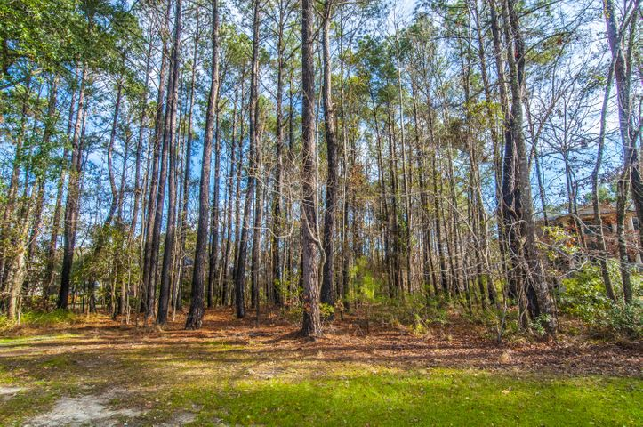 1841 Shell Ring Circle, Mount Pleasant, SC 29466