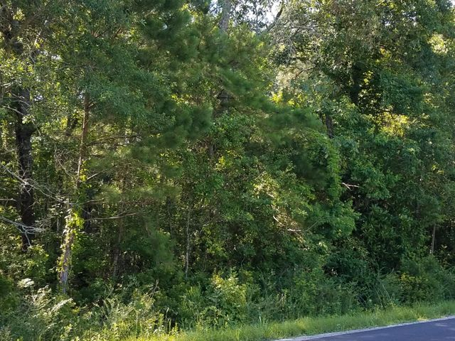 0 Lindy Creek Road, Goose Creek, SC 29445