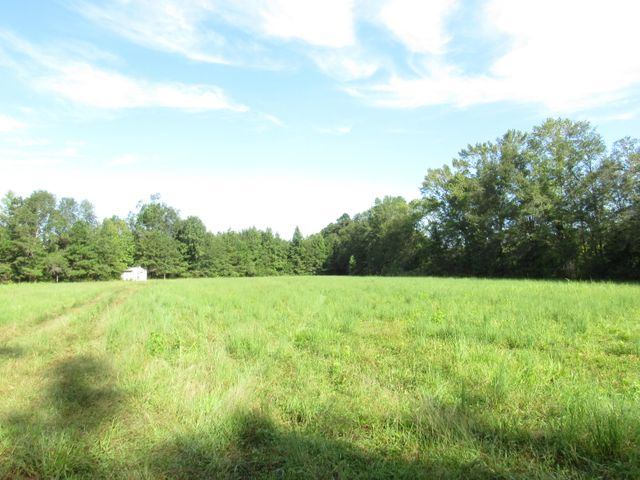 Gorgeous tract in fast growing Ridgeville community. Storage building in place on property.