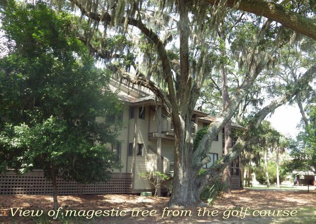 855 Club Cottage Road, Edisto Island, SC 29438