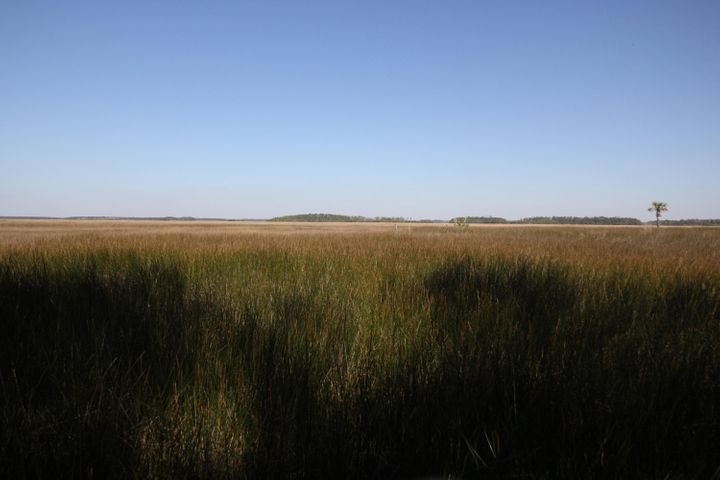 Marsh/Creek Front to Foster Creek, Wando River