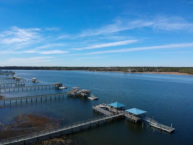 Prepare to be impressed with this deep water estate directly on the Wando River! Enjoy boating with the most coveted water access in all of Mt. Pleasant!