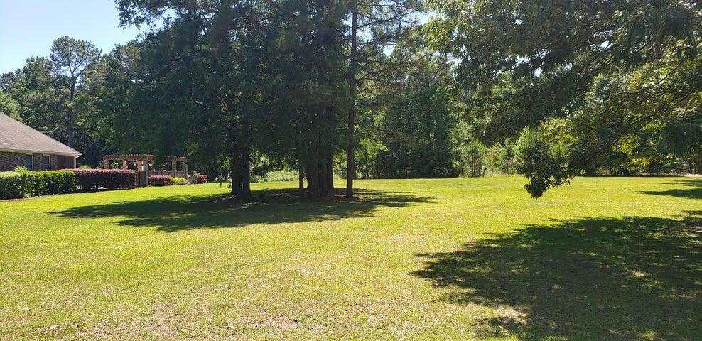 117 Wood Lake Drive, Manning, SC 29102