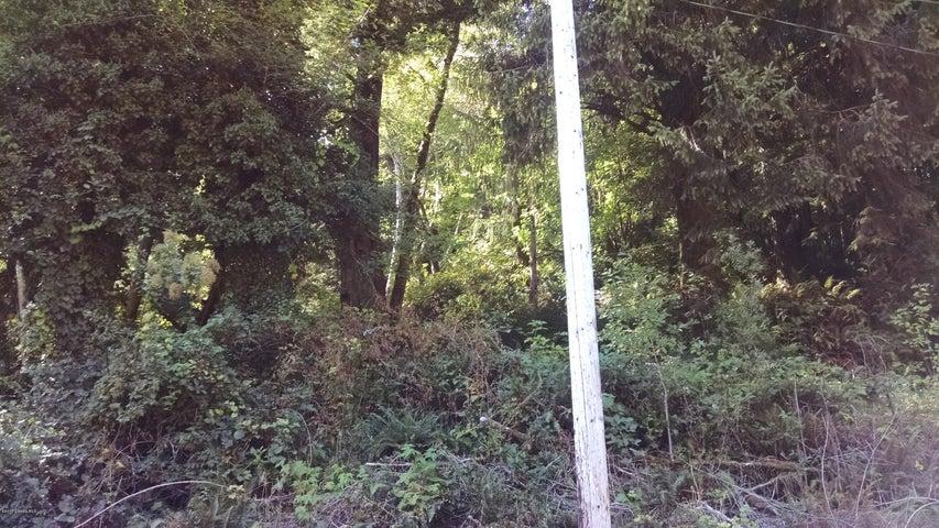 TL 1200 Elk Trail Drive, Nehalem, OR 97131