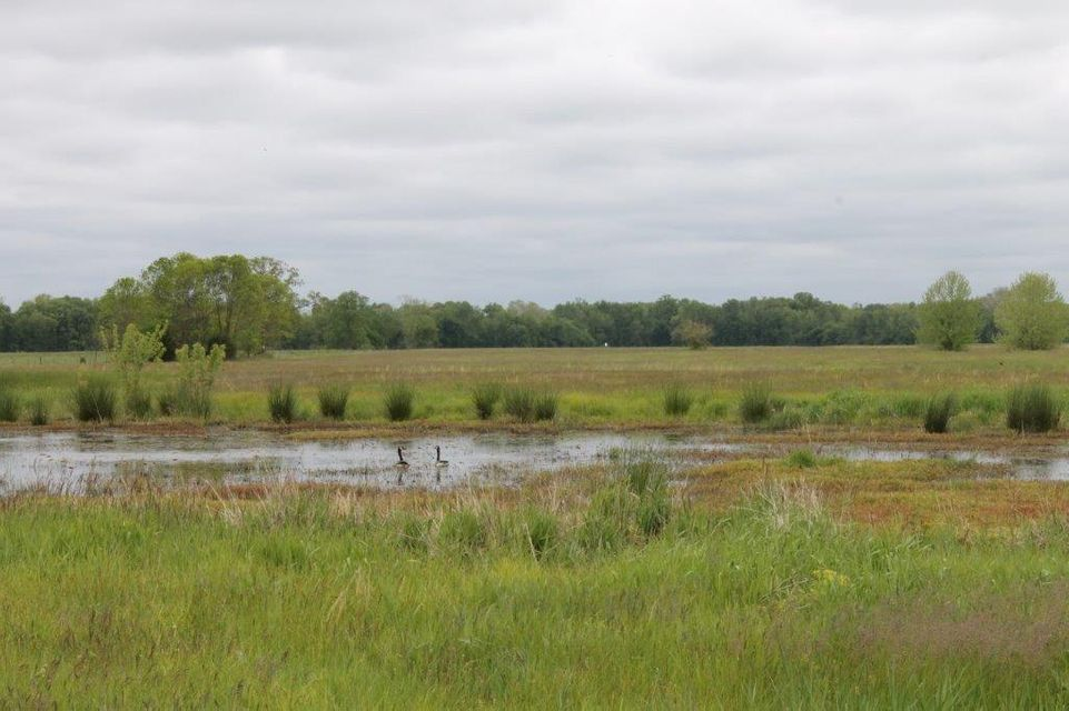 Farm for sale –   Dilthey   Pilot Grove, MO