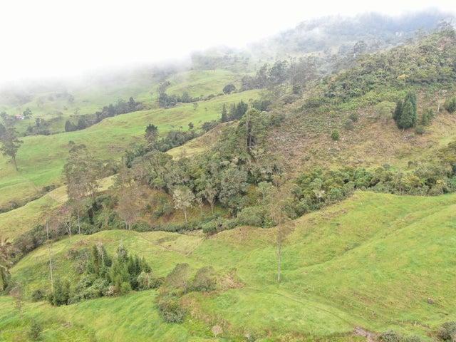 Terreno Cundinamarca>Pacho>Vereda Monte Verde - Venta:700.000.000 Pesos - codigo: 19-911