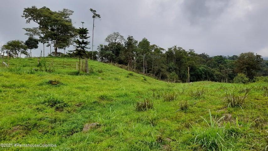 Terreno Cundinamarca>Municipio El Colegio>Vereda Antioquia - Venta:460.000.000 Pesos - codigo: 22-73
