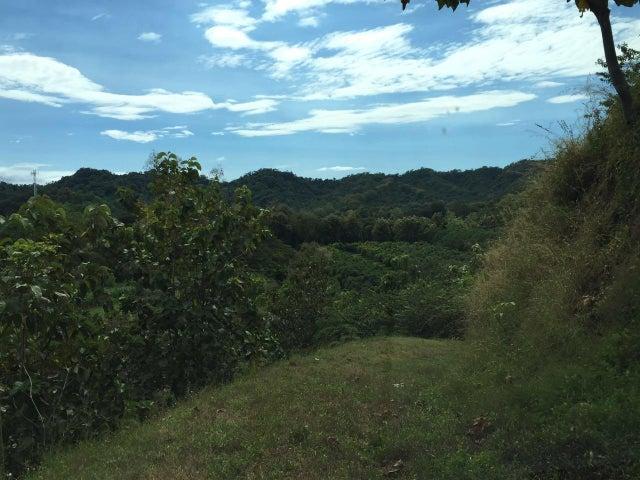 Terreno Puntarenas>Tambor>Paquera - Venta:69.000 US Dollar - codigo: 17-731