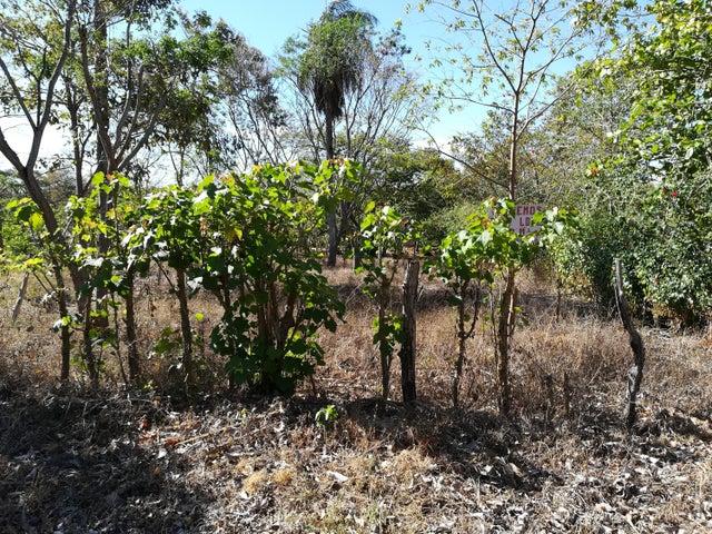 Terreno Alajuela>Orotina>Orotina - Venta:29.900 US Dollar - codigo: 18-169