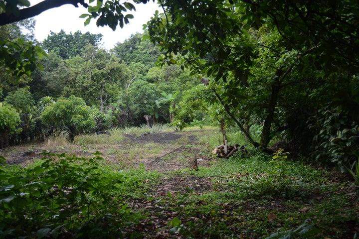 Terreno Alajuela>Orotina>Orotina - Venta:70.000 US Dollar - codigo: 18-433