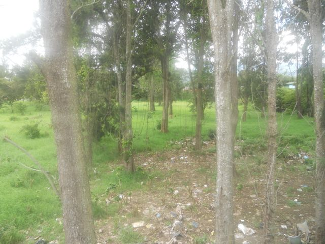 Terreno Cartago>Cartago Centro>Cartago - Venta:1.600.000 US Dollar - codigo: 18-519
