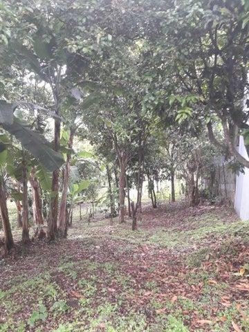 Terreno San Jose>Guadalupe>Goicoechea - Venta:266.000 US Dollar - codigo: 18-892
