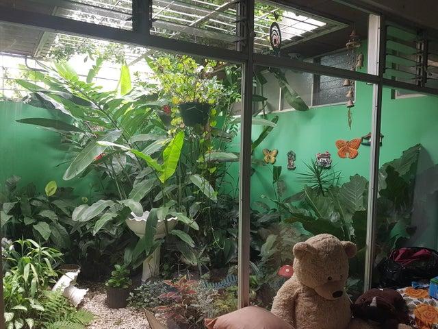 Casa San Jose>Bello Horizonte>Escazu - Venta:240.000 US Dollar - codigo: 19-244