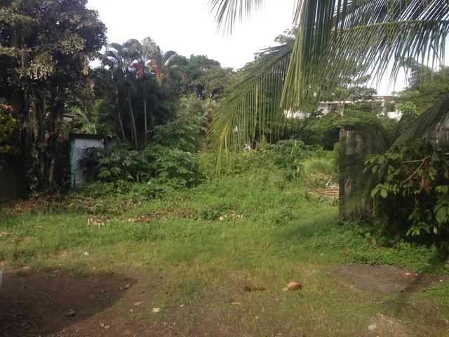 Terreno Puntarenas>Jaco>Garabito - Venta:195.000 US Dollar - codigo: 19-375