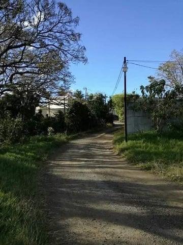 Terreno Heredia>San Pablo>San Pablo - Venta:200.000 US Dollar - codigo: 19-110