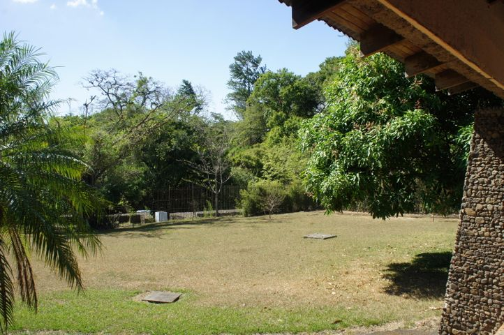 Terreno Alajuela>Turrucares>Alajuela - Alquiler:400.000 US Dollar - codigo: 19-475