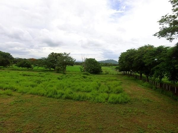 Terreno Guanacaste>Huacas>Santa Cruz - Venta:140.000 US Dollar - codigo: 19-874