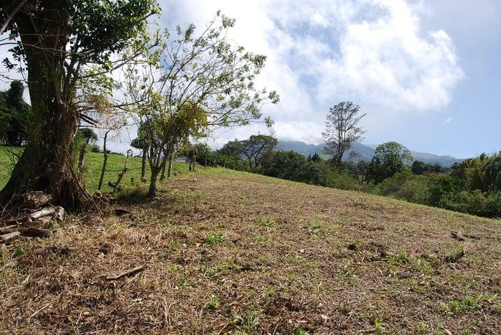 Terreno San Jose>San Isidro>Vazquez de Coronado - Venta:570.605 US Dollar - codigo: 19-882