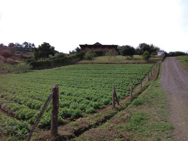 Casa Cartago>Pacayas>Alvarado - Venta:330.000 US Dollar - codigo: 19-1066