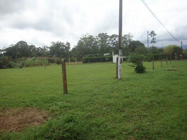 Terreno Limon>Guapiles>Pococi - Venta:70.000 US Dollar - codigo: 19-1287