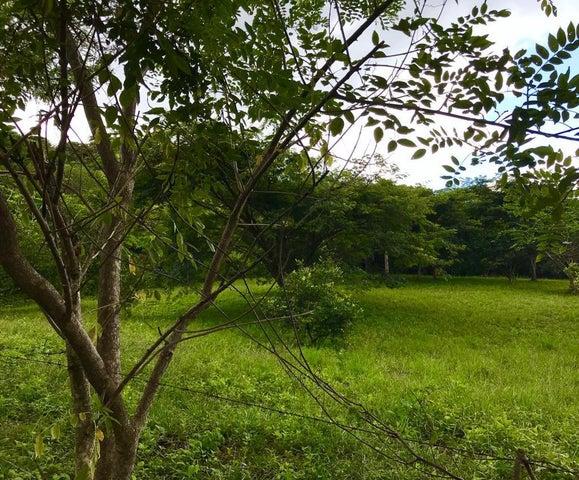 Terreno San Jose>Ciudad Colon>Mora - Alquiler:590.000 US Dollar - codigo: 19-1317