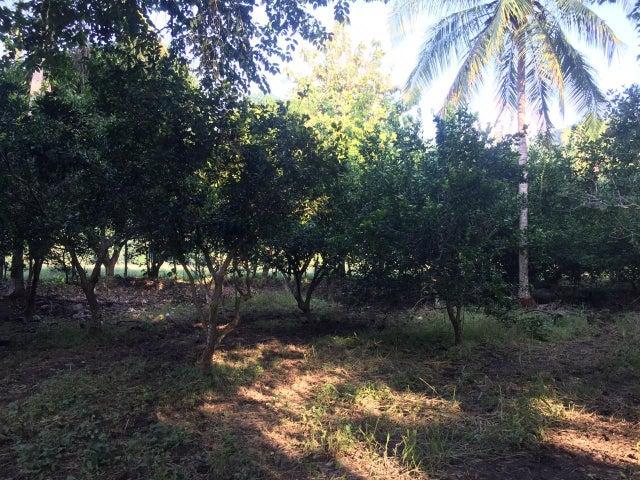 Terreno Guanacaste>Santa Rita>Nandayure - Venta:110.000 US Dollar - codigo: 19-1426
