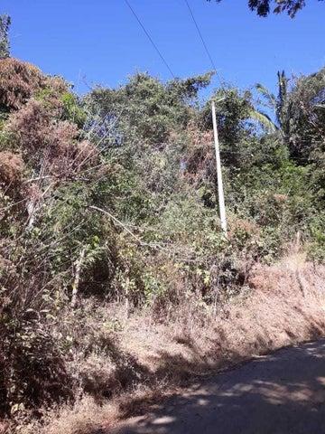 Terreno Guanacaste>San Juanillo>Santa Cruz - Venta:45.000 US Dollar - codigo: 19-1673