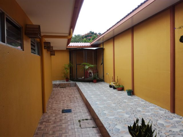 Local comercial Cartago>Turrialba>Jimenez - Venta:3.000.000 US Dollar - codigo: 19-1651