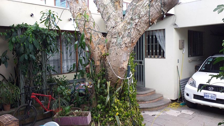 Casa San Jose>Rohrmoser>Pavas - Alquiler:1.500 US Dollar - codigo: 20-183