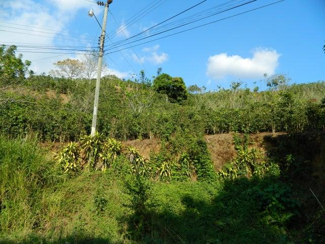 Terreno Alajuela>Chilamate>Poas - Venta:441.900 US Dollar - codigo: 20-531