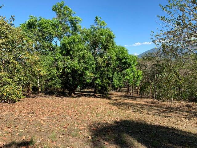 Terreno Alajuela>Orotina>Orotina - Venta:46.000 US Dollar - codigo: 20-635