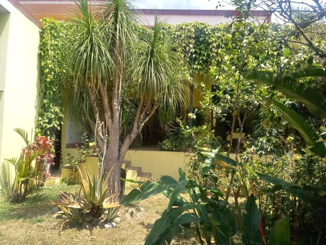 Casa San Jose>Guadalupe>Goicoechea - Venta:335.000 US Dollar - codigo: 20-705