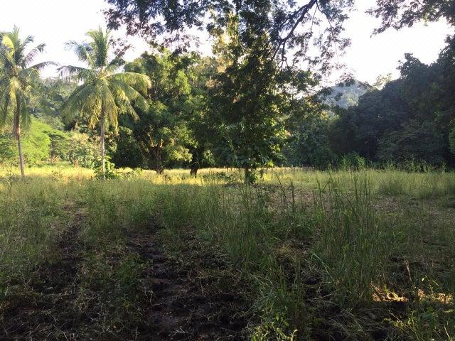 Terreno Guanacaste>Santa Rita>Nandayure - Venta:110.000 US Dollar - codigo: 20-910