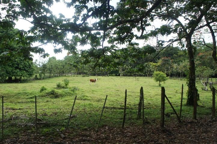 Terreno Heredia>Rio Frio>Sarapiqui - Venta:29.000 US Dollar - codigo: 20-1127