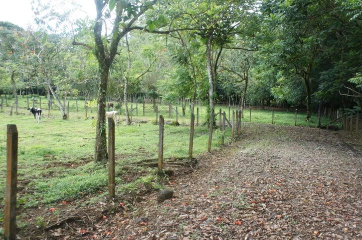 Terreno Heredia>Rio Frio>Sarapiqui - Venta:29.000 US Dollar - codigo: 20-1128