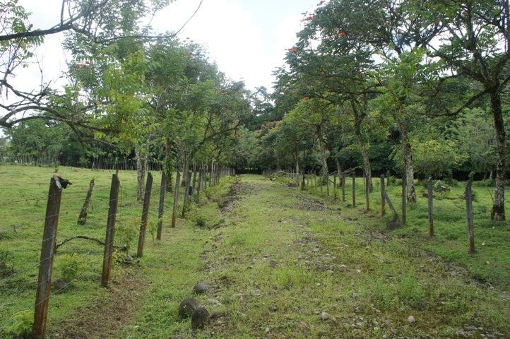 Terreno Heredia>Rio Frio>Sarapiqui - Venta:29.000 US Dollar - codigo: 20-1129