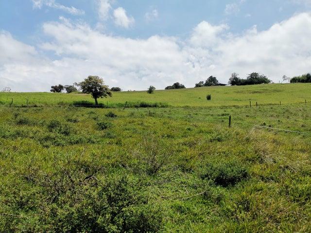 Terreno San Jose>San Pedro>Vazquez de Coronado - Venta:450.000 US Dollar - codigo: 19-1205