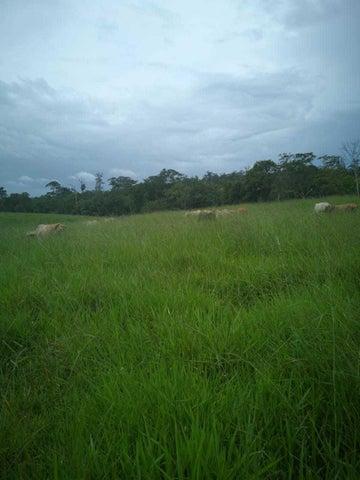 Terreno Alajuela>Upala>San Carlos - Venta:1.800.000 US Dollar - codigo: 20-1494