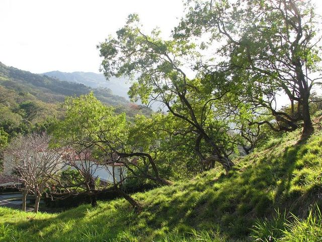 Terreno San Jose>Altos Paloma>Santa Ana - Venta:669.000 US Dollar - codigo: 20-1642