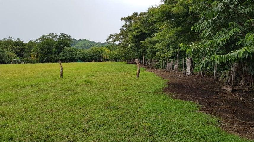 Terreno Guanacaste>Sardinal>Carrillo - Venta:46.000 US Dollar - codigo: 20-1949