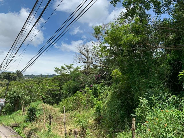 Terreno San Jose>San Antonio>Escazu - Venta:995.000 US Dollar - codigo: 20-2024