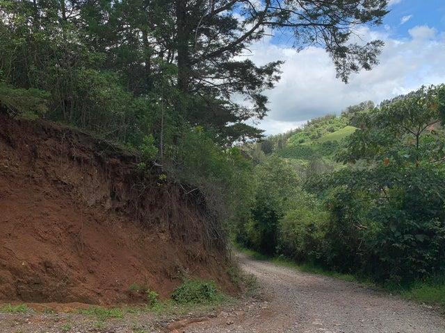 Terreno Cartago>Tobosi>El Guarco - Venta:300.000 US Dollar - codigo: 20-2026