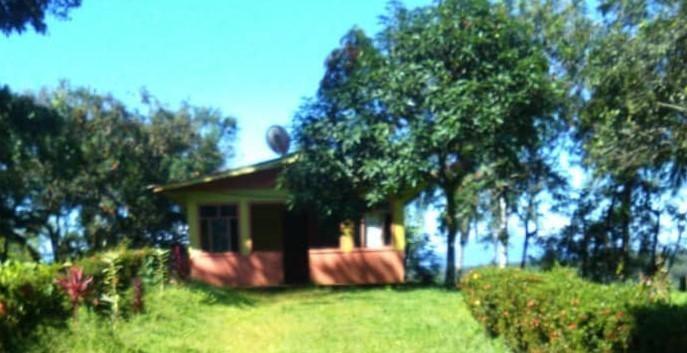 Terreno Alajuela>Alajuela>San Carlos - Venta:500.000 US Dollar - codigo: 21-74