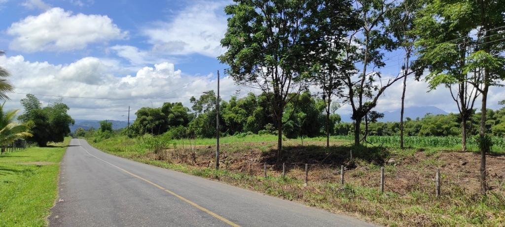 Terreno Heredia>Rio Frio>Sarapiqui - Venta:50.000 US Dollar - codigo: 21-125