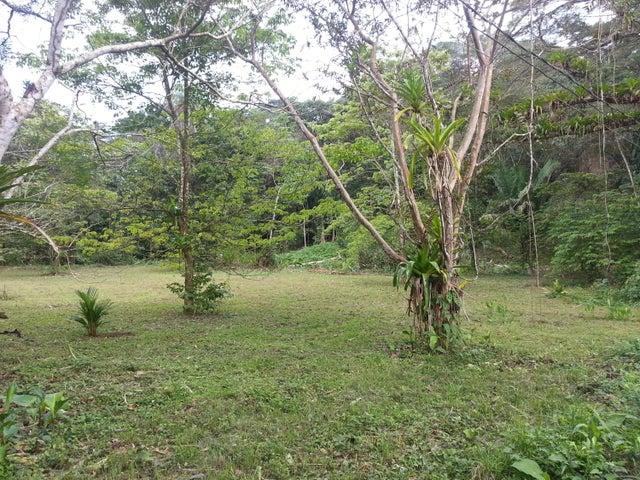 Terreno Puntarenas>Tarcoles>Garabito - Venta:172.000 US Dollar - codigo: 21-214