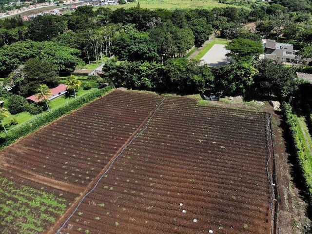 Terreno Alajuela>San Rafael de Alajuela>Alajuela - Venta:1.900.000 US Dollar - codigo: 21-230