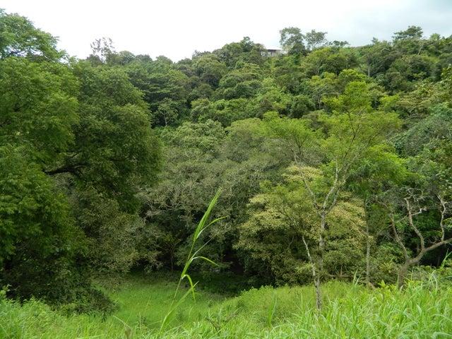 Terreno Alajuela>Desamparados>Alajuela - Venta:1.400.000 US Dollar - codigo: 21-630