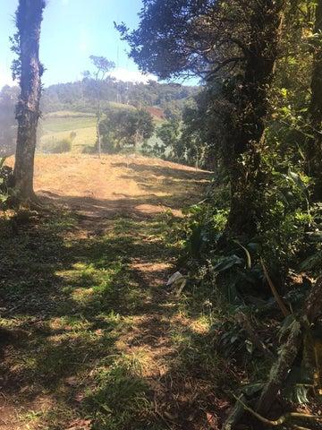 Terreno Alajuela>Zarcero>Alajuela - Venta:220.000 US Dollar - codigo: 21-763